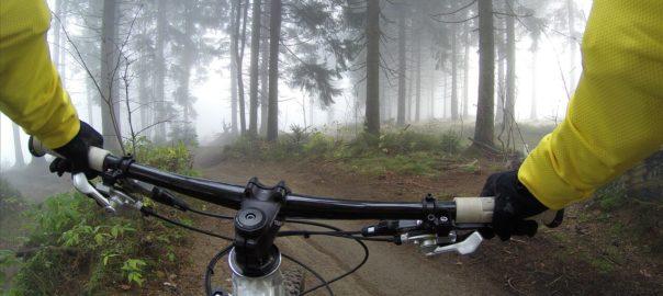 Fahrradfahrer im Wald bei Wesenberg