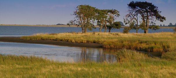 Naturschutzgebiet Seenplatte